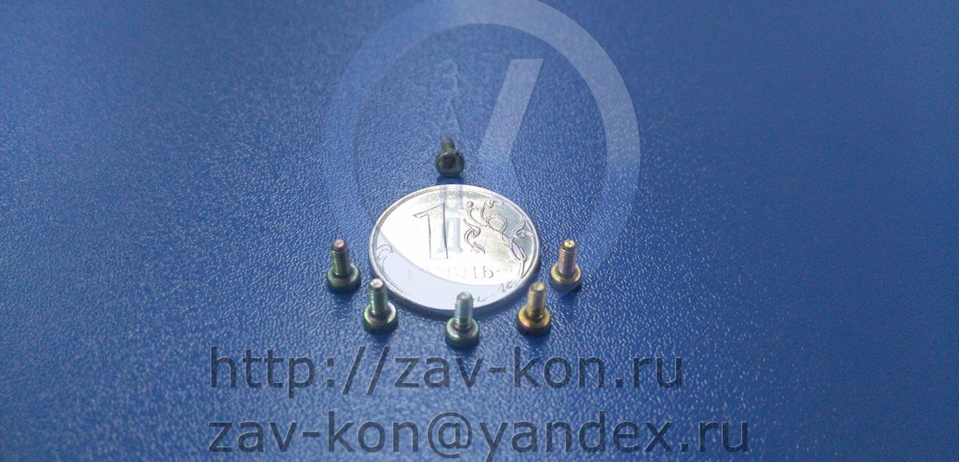 Винт В.М2-6gх5.58.013 ГОСТ 1491-80