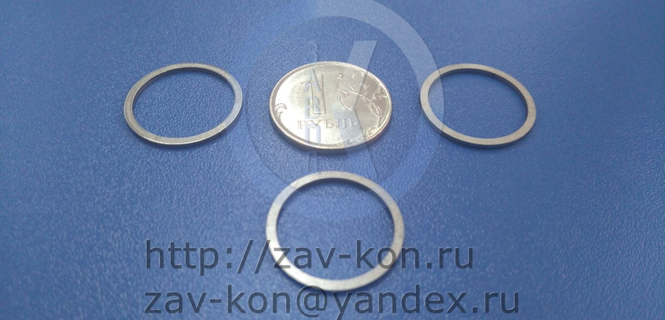 Кольца 19-1 ОСТ 1 10293-71